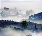 Đà Lạt huyền ảo trong sương sớm. Ảnh: Phạm Anh Dũng