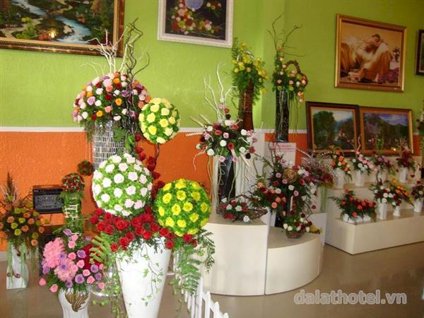 Thăm cơ sở sx hoa khô Đà Lạt